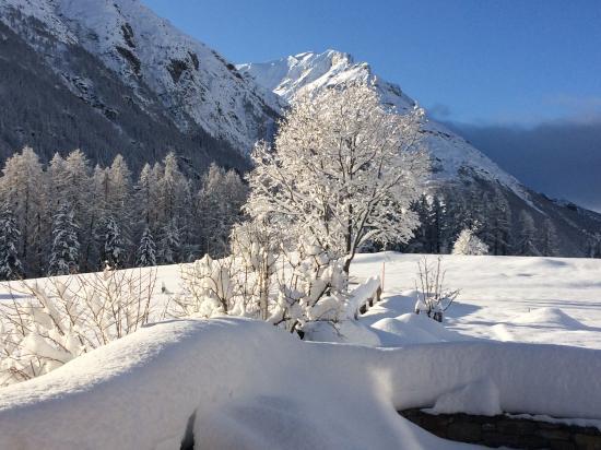 Aprés les premières chutes de neige ....